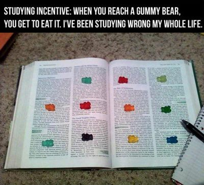 gummybearstudy